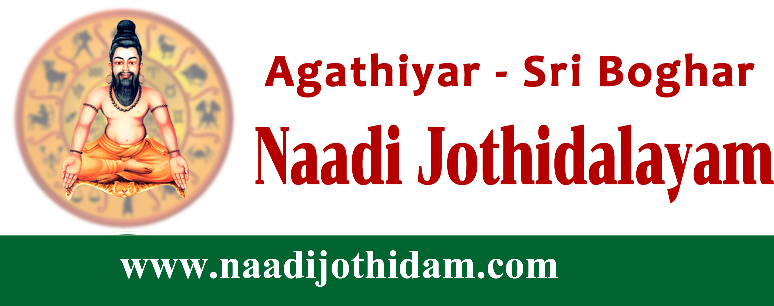 top astrologer in T.Nagar